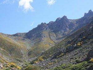 Portilla Jaranda en la Sierra de Gredos.